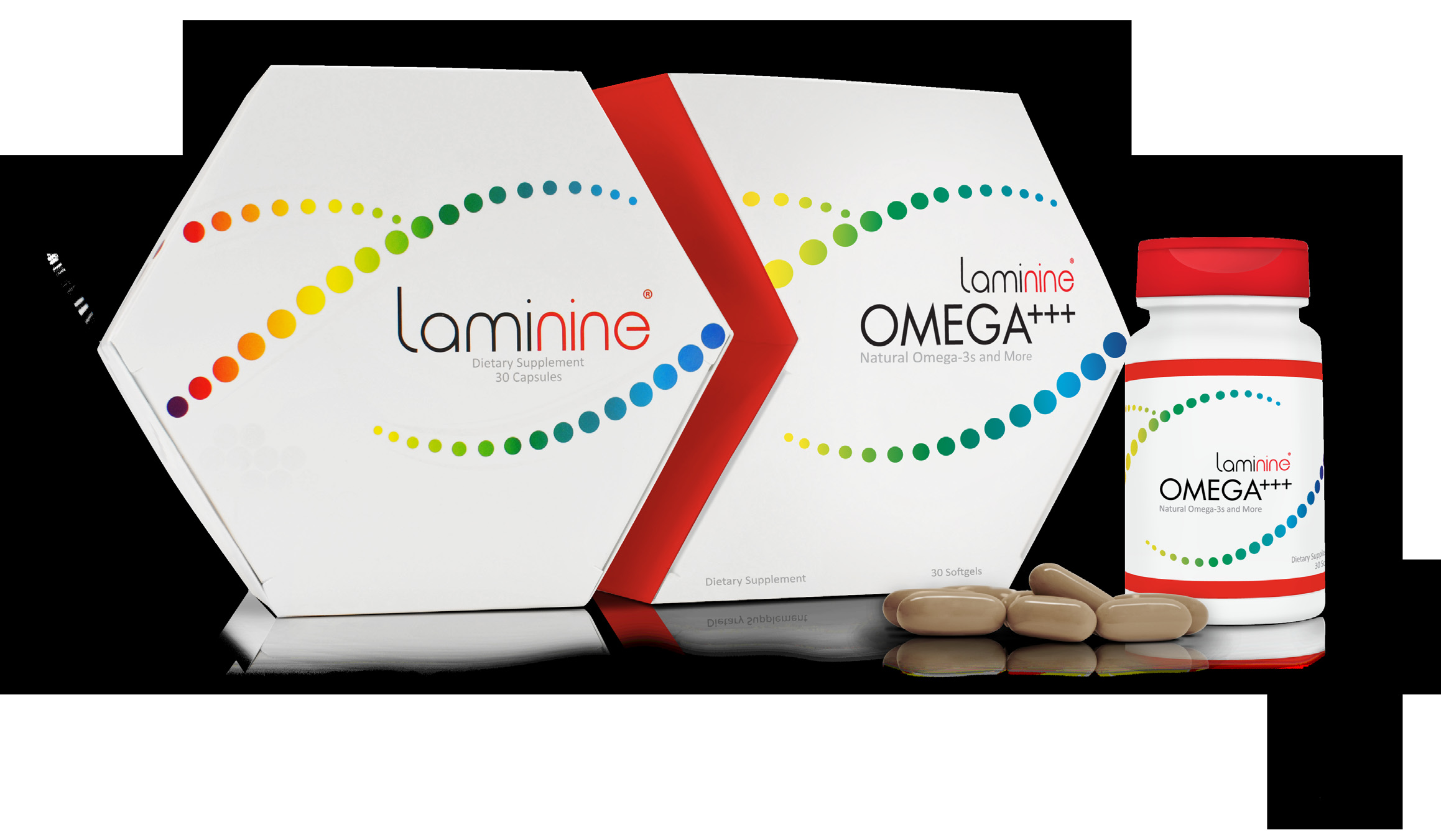 ENG-Custom-LaminineOMEGABrochure_img_5