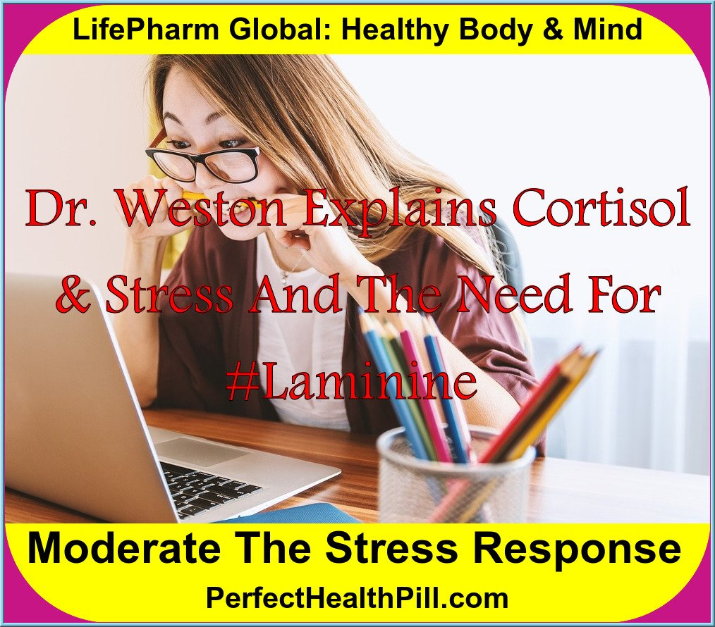 Cortisol: The Stress Connection | Dr. Weston