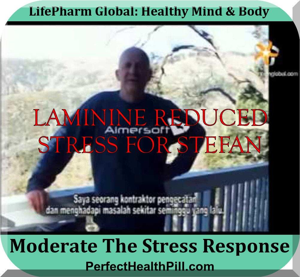 LAMININE STRESS & EMOSI